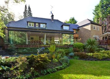 Thumbnail 4 bedroom detached house to rent in Beech Close, Cobham
