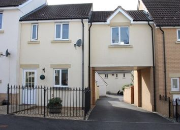 Thumbnail 2 bed property to rent in Biddiblack Way, Bideford, Devon
