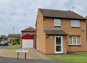 Thumbnail 3 bed detached house to rent in Mallard View, Norton, Malton