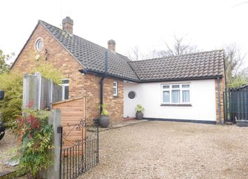 Thumbnail 2 bed bungalow to rent in Ingram Cottages, Loves Green, Highwood, Chelmsford