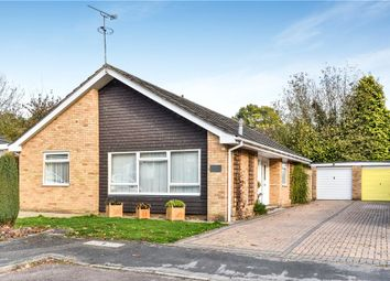 Thumbnail 3 bed detached bungalow for sale in Melville Avenue, Frimley, Camberley