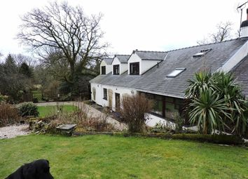 Thumbnail 4 bed farm for sale in Llanddewi Velfrey, Narberth, Pembrokeshire