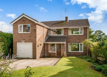 Thumbnail 4 bed detached house for sale in Hop Gardens, Whiteparish, Salisbury