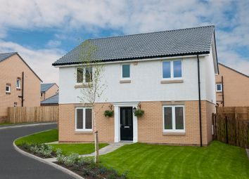 Thumbnail 4 bed detached house for sale in Torrance Park, Holytown
