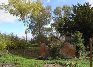 Thumbnail 2 bed cottage for sale in Bosbury, Ledbury