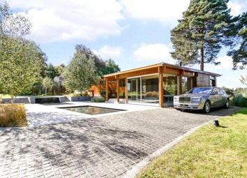 Thumbnail 4 bed bungalow to rent in Westwood Road, Windlesham, Surrey