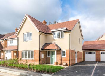 Thumbnail 4 bed detached house for sale in Bramley Avenue, Horam, Heathfield