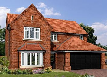 "Thumbnail 4 bed detached house for sale in ""The Warkworth"" at Flaxley Road, Selby"