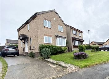Thumbnail 3 bed detached house for sale in Horton Close, Halfway, Sheffield