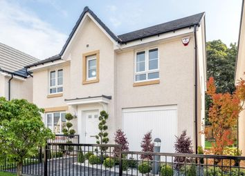 "Thumbnail 4 bed detached house for sale in ""Corgarff"" at Westbarr Drive, Coatbridge"