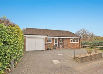 Thumbnail 3 bed bungalow for sale in The Street, Clapham, Worthing, West Sussex