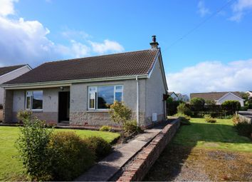 Thumbnail 2 bed detached bungalow for sale in Gasstown, Dumfries