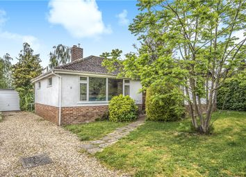 3 Bedrooms Detached bungalow for sale in Nutmead Close, Child Okeford, Blandford Forum DT11