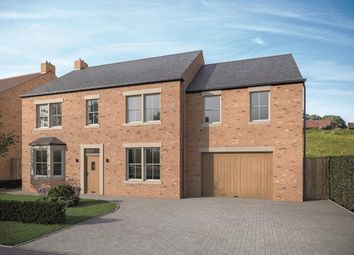 Thumbnail 5 bed detached house for sale in 14 The Green, Pickhill, Thirsk