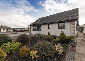 Thumbnail 3 bed bungalow for sale in Birch Place, Tain, Highland