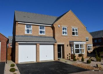Thumbnail 5 bedroom detached house to rent in Spinney Close, Moulton, Northampton