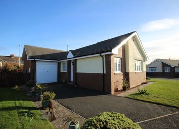 Thumbnail 3 bed bungalow for sale in Westview, Embleton, Alnwick