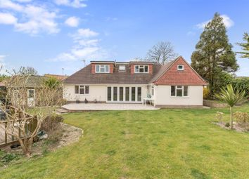 Thumbnail 7 bed detached bungalow for sale in Old Mill Close, Brighton