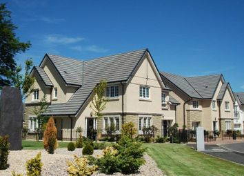 "Thumbnail 5 bedroom detached house for sale in ""The Lowther"" at Liberton Gardens, Liberton, Edinburgh"