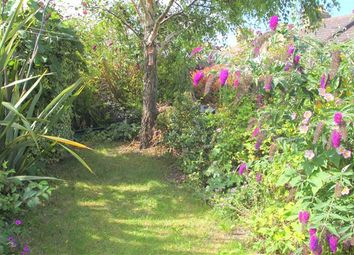 Thumbnail 3 bed terraced house for sale in Princes Road, Brighton, East Sussex