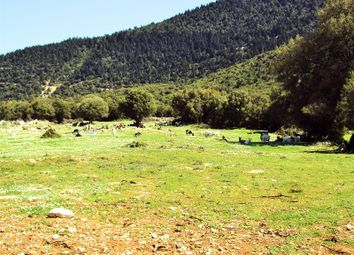 Thumbnail Land for sale in Kefalonia, Ionian Islands, Ionian Islands, Greece