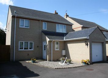 Thumbnail 3 bed detached house to rent in St. Philips Road, Newmarket