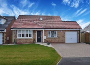 Thumbnail 4 bed detached bungalow for sale in The Beadnell, Yeavering Court, Belford