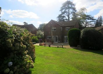 4 bed detached house for sale in Haskells Close, Lyndhurst SO43