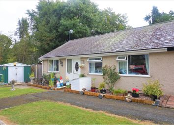 Thumbnail 3 bed semi-detached bungalow for sale in Hermitage, Llangollen
