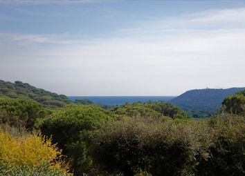 Thumbnail 6 bed property for sale in Ramatuelle, Var, France