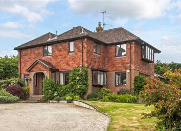 Thumbnail 6 bed detached house to rent in Chineham Lane, Sherborne St. John, Basingstoke