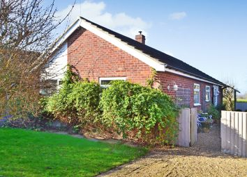 3 bed detached bungalow for sale in Mill Close, Pulham Market, Diss IP21