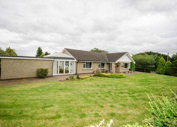 Thumbnail 4 bed bungalow to rent in Hebron, Morpeth