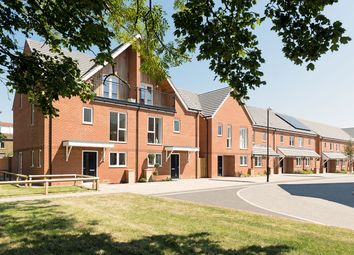 """Thumbnail 3 bed semi-detached house for sale in """"The Walnut"""" at Connolly Way, Chichester"""