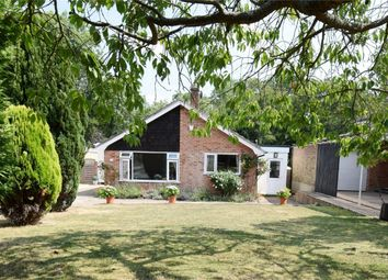 Thumbnail 4 bed detached bungalow for sale in 19 Hurst Farm Road, Weald, Kent