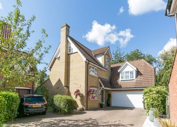 Thumbnail 6 bed detached house for sale in Grantham Avenue, Great Notley, Braintree