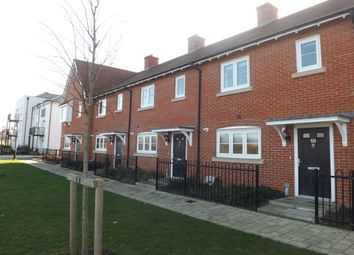 3 bed property to rent in Houghton Avenue, Waterlooville PO7