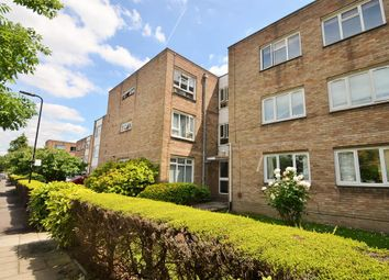 Thumbnail Studio to rent in Hutton Court, Castlebar Mews, Ealing