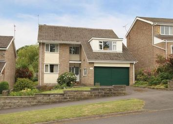 Thumbnail Detached house for sale in Silverdale Road, Sheffield, South Yorkshire