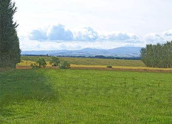 Thumbnail Land for sale in Heriot Bank Development Site, Whitsome, Duns, Berwickshire, Scottish Borders