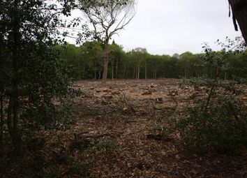Thumbnail Land for sale in Hilland Woods, Hilland Rise, Headley, Bordon, Hampshire