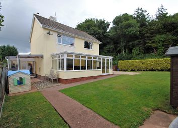Thumbnail 4 bedroom detached house for sale in The Meadows, Porlock, Nr.Minehead