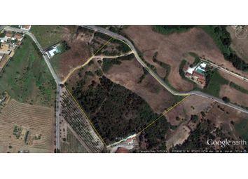 Thumbnail Land for sale in Pontével, Pontével, Cartaxo