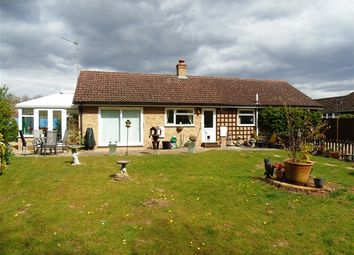 Thumbnail 3 bed detached bungalow for sale in Mulberry Close, Mildenhall, Bury St. Edmunds