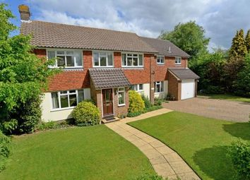 Thumbnail 5 bed detached house for sale in West Horsley, Surrey