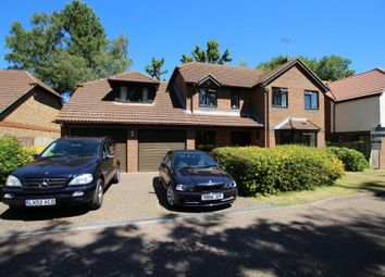 Thumbnail 4 bed detached house to rent in Martinsyde, Woking