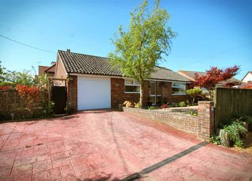 3 bed bungalow for sale in The Avenue, Trimley St. Mary, Felixstowe IP11