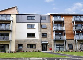 1 bed flat to rent in Hammerman Avenue, Aberdeen AB24