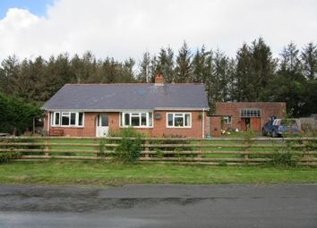 Thumbnail 3 bed equestrian property for sale in Pant-Y-Dwr, Rhayader