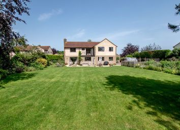 Thumbnail 4 bed detached house for sale in Isle Brewers, Taunton